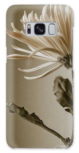 Chrysanthemum Petals 2  Galaxy Case