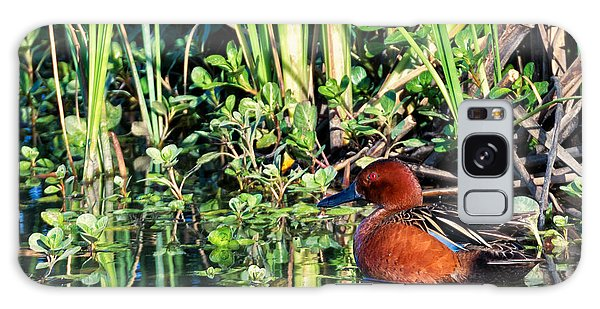 Cinnamon Teal And Dragonfly Galaxy Case