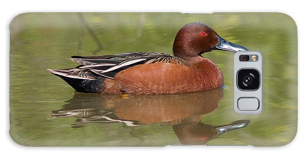 Cinnamon Teal Galaxy Case