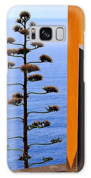 Cinque Terre View Galaxy Case by Debi Demetrion