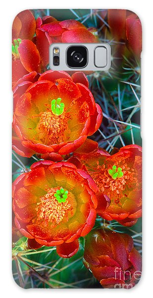 Desert Flora Galaxy Case - Claret Cup by Inge Johnsson