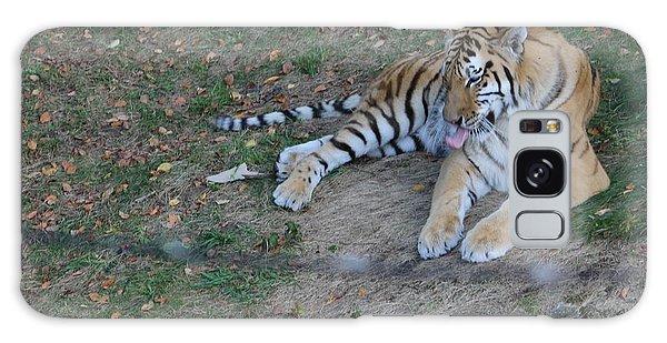 Clean Tiger Galaxy Case