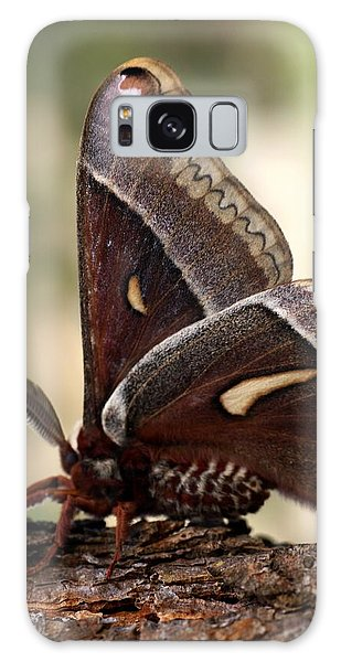 Clem The Moth Galaxy Case by Loni Collins