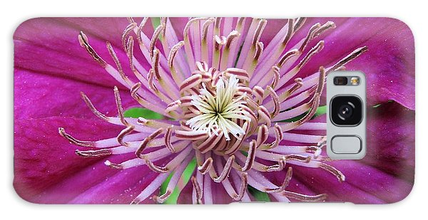 Clematis Heart Two Galaxy Case