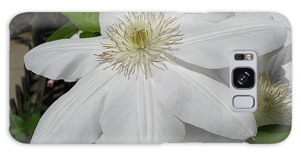 Clematis - Madame Le Coultre Galaxy Case