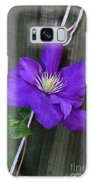 Clematis On A String Galaxy Case