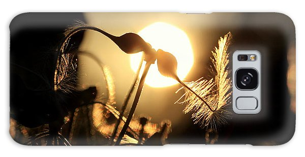 Clematis - Sunset Galaxy Case by Kenny Glotfelty
