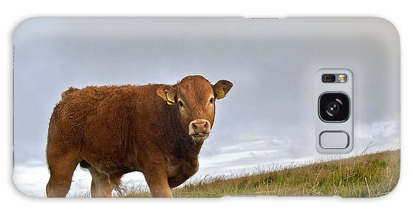 Cliffs Of Moher Brown Cow Galaxy Case