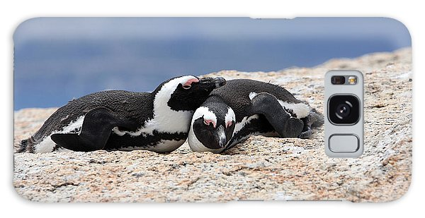 Close Bonds, African Penguin Galaxy Case