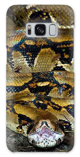 Boa Constrictor Galaxy Case - Close-up Of A Boa Constrictor, Arenal by Panoramic Images