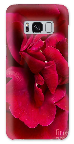 Close Up Of A Bright Red Rose Galaxy Case by Perry Van Munster