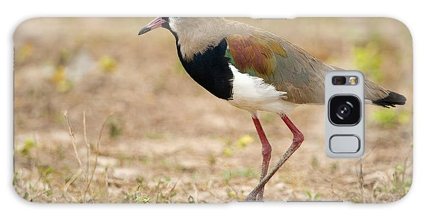 Lapwing Galaxy Case - Close-up Of A Southern Lapwing Vanellus by Panoramic Images