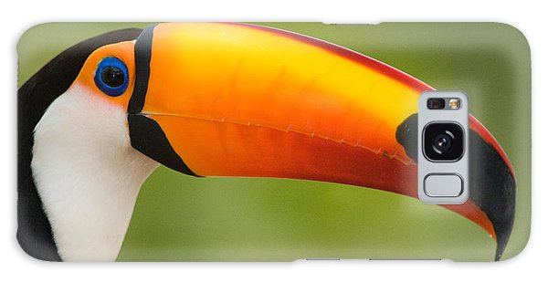 Toucan Galaxy S8 Case - Close-up Of A Toco Toucan Ramphastos by Panoramic Images