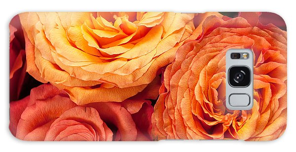 Close Up View Of Pink Orange Yellow Hybrid Tea Roses Galaxy Case