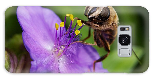 Closeup Of A Bee On A Purple Flower Galaxy Case