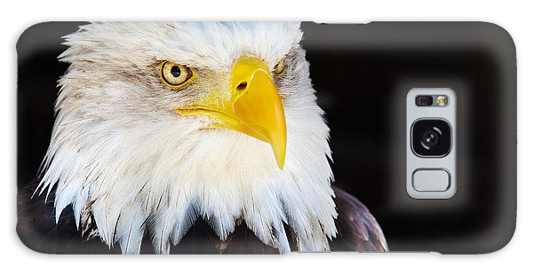Closeup Portrait Of An American Bald Eagle Galaxy Case