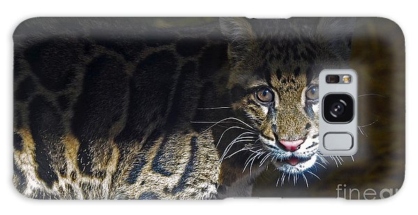 Clouded Snow Leopard Cub Galaxy Case