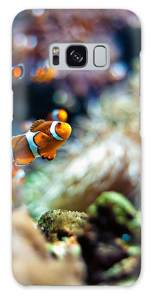 Clownfish  Galaxy Case