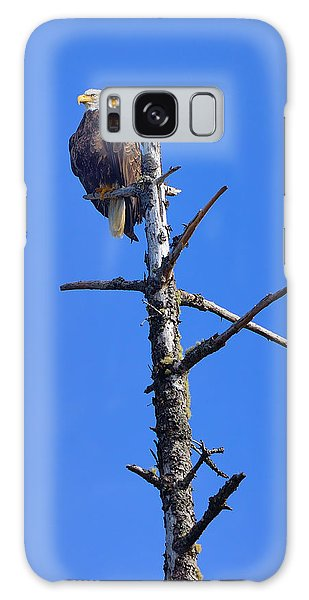 Coastal Bald Eagle Galaxy Case