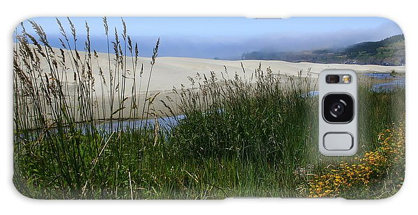 Coastal Grasslands Galaxy Case