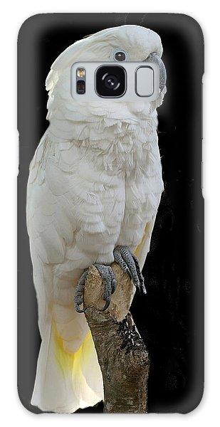 Cockatoo Cutie Galaxy Case by Myrna Bradshaw