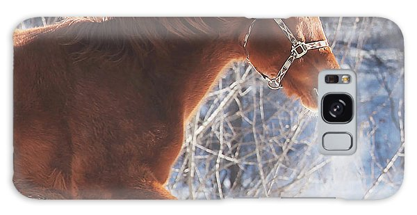 Horse Galaxy Case - Cold by Carrie Ann Grippo-Pike