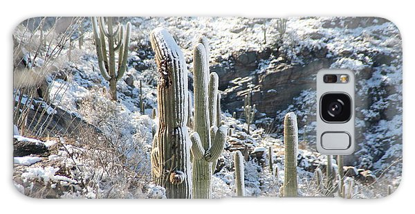 Cold Saguaros Galaxy Case by David S Reynolds