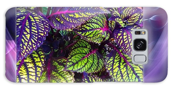 Coleus Abstract Galaxy Case