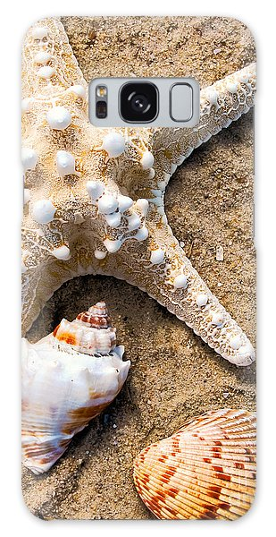 Collecting Shells Galaxy Case