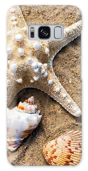 Collecting Shells Galaxy Case by Colleen Kammerer