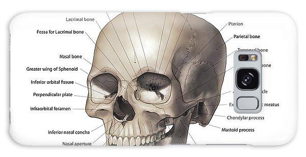 Lacrimal Bone Galaxy Cases | Fine Art America