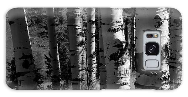 Colorado Aspen Grove II  Galaxy Case by John Pagliuca