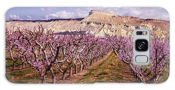Colorado Orchards In Bloom Galaxy Case