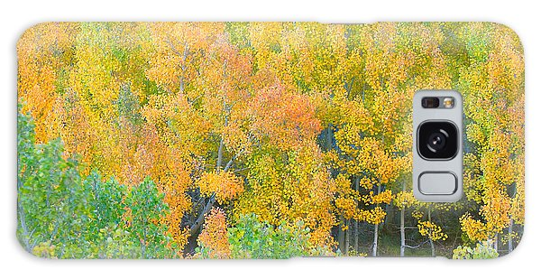 Galaxy Case featuring the photograph Colorful Aspen Forest - Eastern Sierra by Ram Vasudev