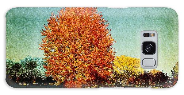 Colorful Autumn Galaxy Case
