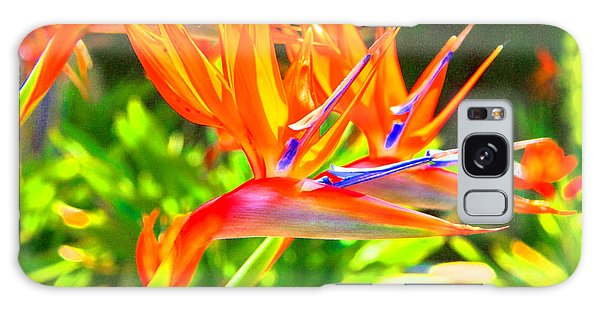 Colorful Birds Of Paradise Galaxy Case