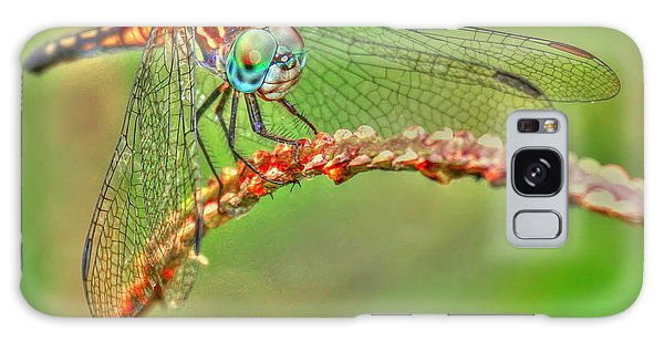 Colorful Dragonfly Galaxy Case