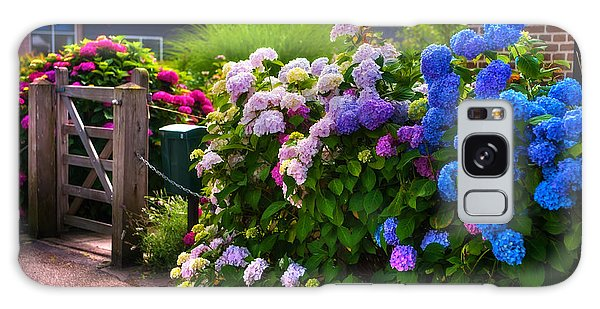 Colorful Hydrangea At The Gate. Giethoorn. Netherlands Galaxy Case