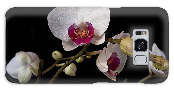 Colorful Moth Orchid Galaxy Case