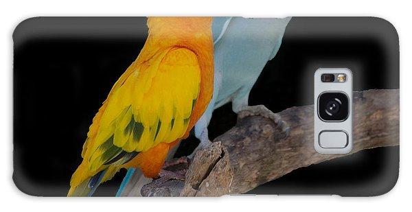Sun Conure And Ring Neck Parakeet Galaxy Case