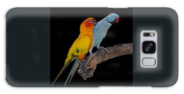 Sun Conure And Ring Neck Parakeet Galaxy Case