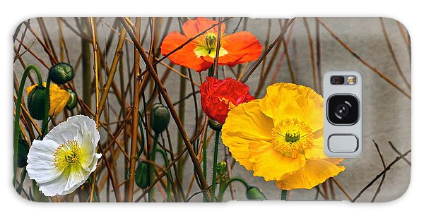 Colorful Poppies And White Willow Stems Galaxy Case