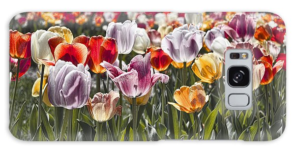 Colorful Tulips In The Sun Galaxy Case