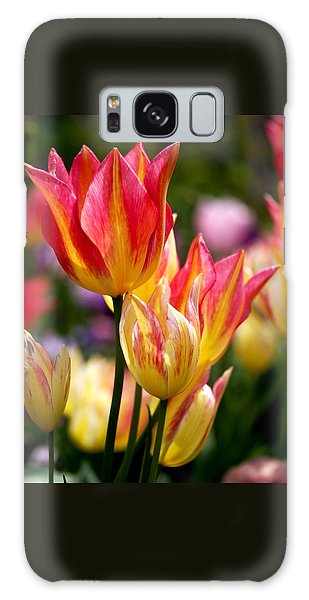 Colorful Tulips Galaxy Case by Rona Black