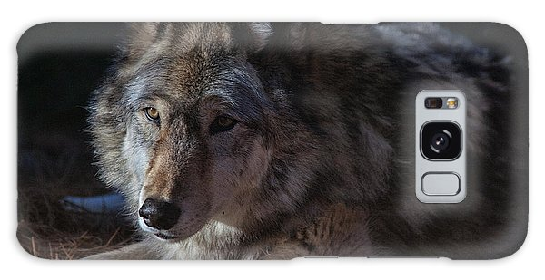 Colors Of A Wolf Galaxy Case