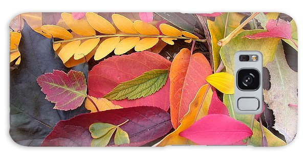 Colors Of Autumn Galaxy Case