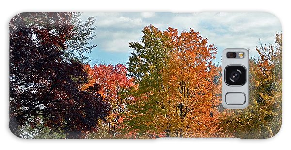 Colors Of Fall Galaxy Case by Judy Wolinsky