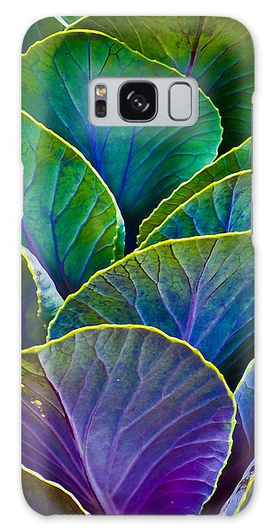 Colors Of The Cabbage Patch Galaxy Case