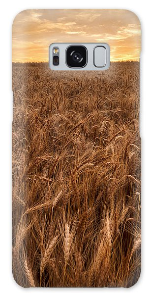 Colors Of Wheat Galaxy Case by Scott Bean