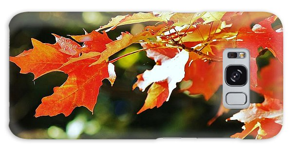 Colours Of Fall Galaxy Case by Al Fritz